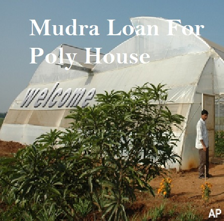 Mudra Loan For Poly House