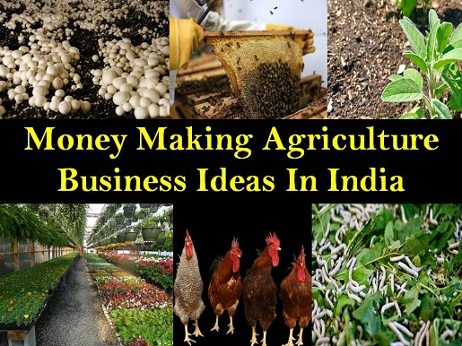 Money Making Agriculture Business Ideas In India